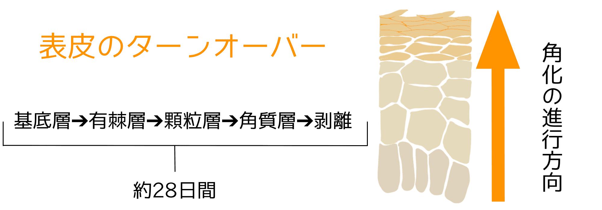 【湯シャンの正しいやり方】美容師が教えるお湯シャンの効果的な洗い方